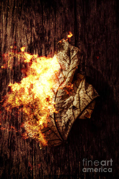 Flammable Photograph - August Burns Red by Jorgo Photography - Wall Art Gallery
