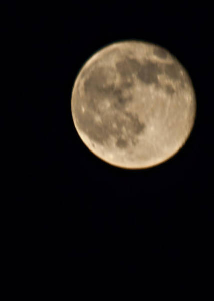 Wall Art - Photograph - August Moon by Bill Perry