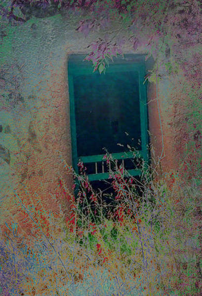 Photograph - Augustines Door by Kate Word