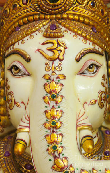Photograph - Aum Ganesha by Tim Gainey