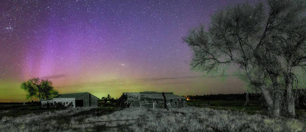Wall Art - Photograph - Aurora At The Old Ranch by Cat Connor