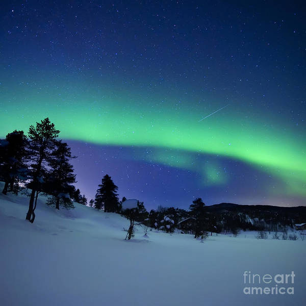 Shooting Star Wall Art - Photograph - Aurora Borealis And A Shooting Star by Arild Heitmann
