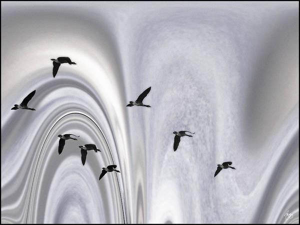 Photograph - Aurora Borealis Flyway by Wayne King
