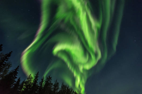 Photograph - Aurora Borealis In Fairbanks Alaska by Brenda Jacobs