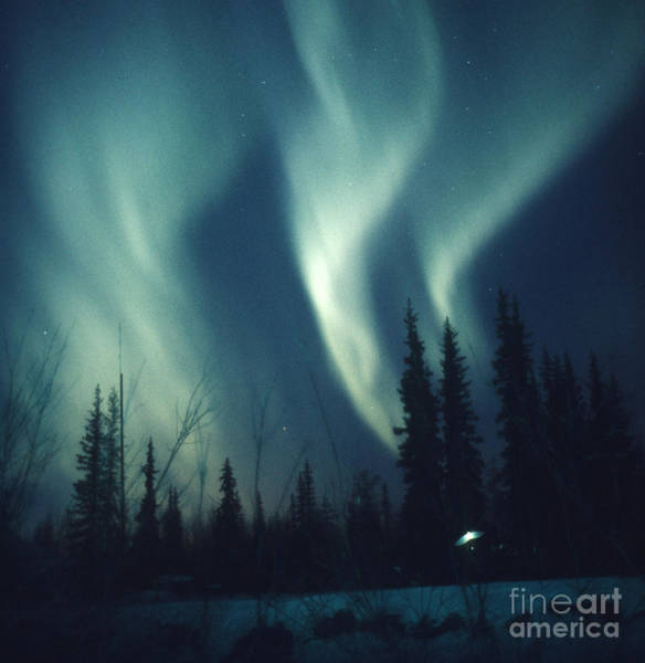 Photograph - Aurora Borealis by Ned Haines