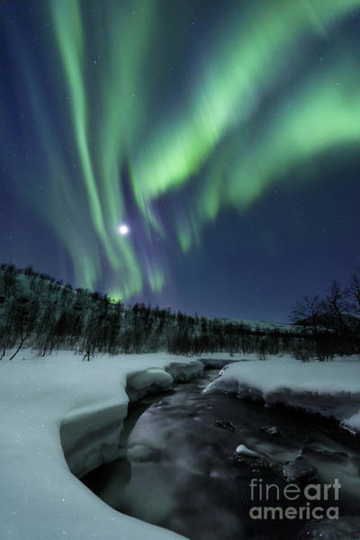 Natural Light Photograph - Aurora Borealis Over Blafjellelva River by Arild Heitmann