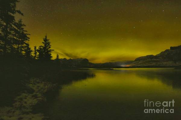 Photograph - Aurora Borealis Over Talbot Lake by Adam Jewell