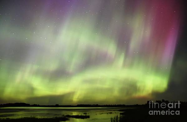 Photograph - Aurora Frenzy by Larry Ricker