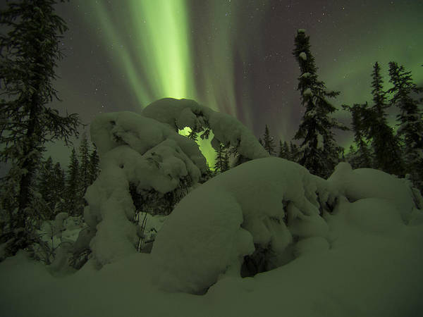 Photograph - Aurora In The Snow Bubbles by Ian Johnson