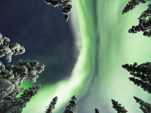 Photograph - Aurora Lying On Your Back by Ian Johnson