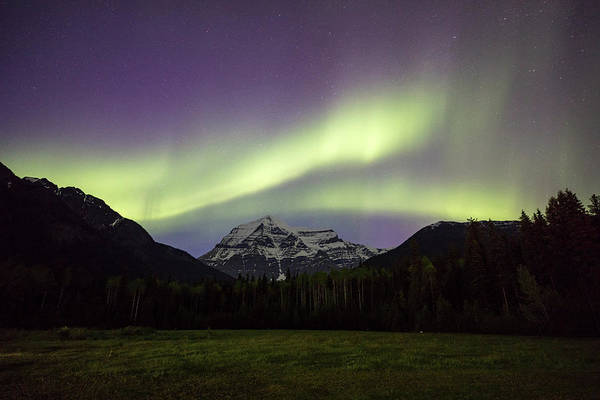 Photograph - Aurora Over Mt Robson by M C Hood