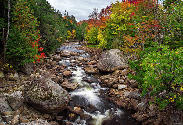Photograph - Ausable Autumn by Mark Papke