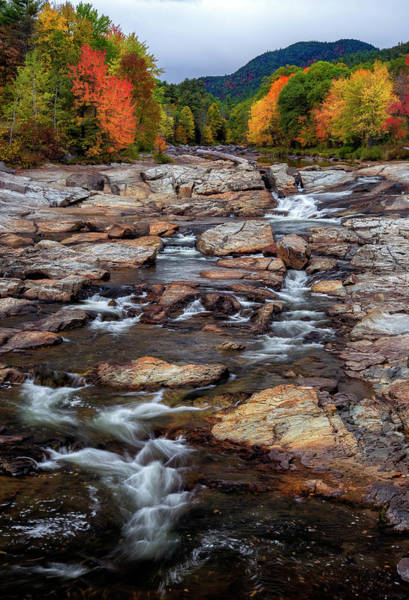 Wall Art - Photograph - Ausable by Mark Papke