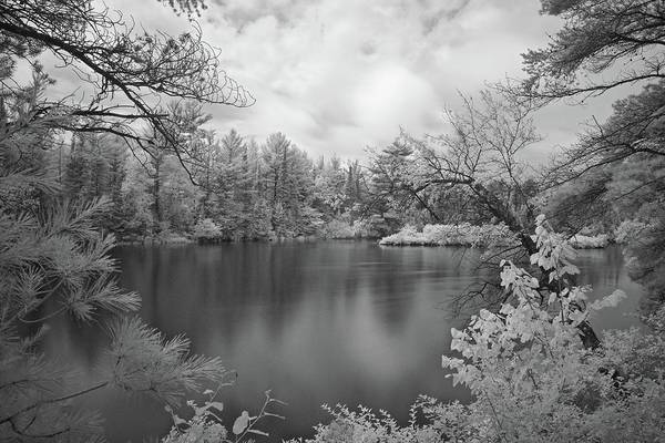 Wall Art - Photograph - Ausable River Infrared 6141 by Michael Peychich