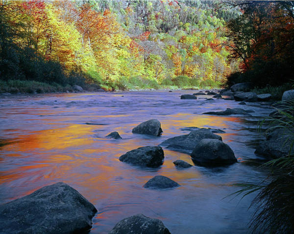 Photograph - Ausable River Reflect by Ed  Cooper Photography