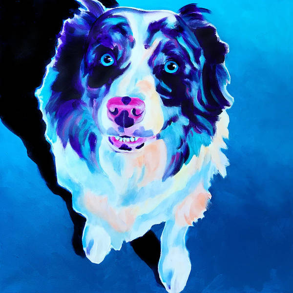 Wall Art - Painting - Aussie - Kokanee by Alicia VanNoy Call