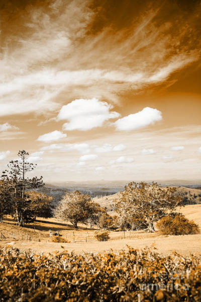 Farmyard Photograph - Australian Landscape Photo Of Maleny Hinterland by Jorgo Photography - Wall Art Gallery
