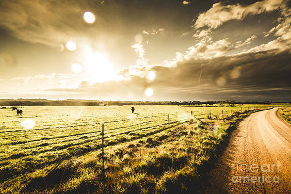 Wall Art - Photograph - Australian Rural Dirt Road  by Jorgo Photography - Wall Art Gallery