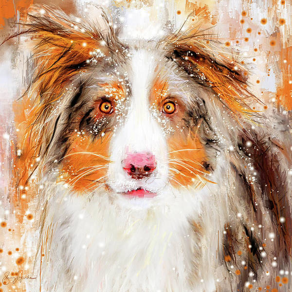 Wall Art - Painting - Australian Shepherd Paintings by Lourry Legarde