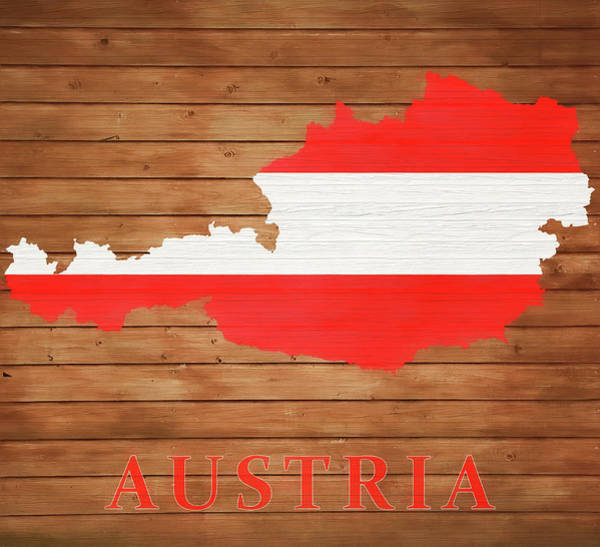 Traveler Mixed Media - Austria Rustic Map On Wood by Dan Sproul