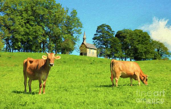 Photograph - Austrian Cows by Jutta Maria Pusl