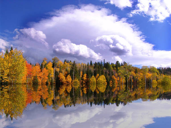 Photograph - Autum Reflections by Mark Smith