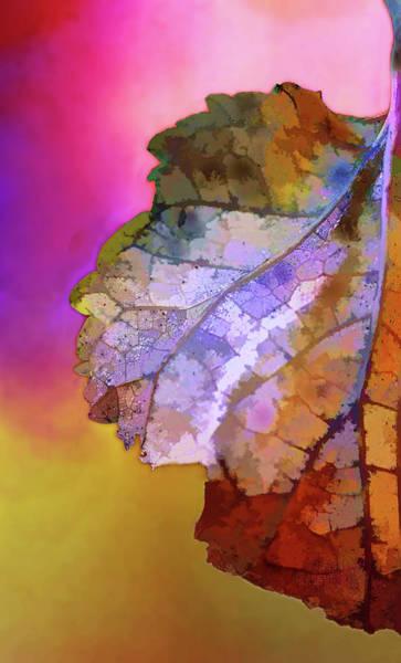 Wall Art - Digital Art - Autumn 1 by Terry Davis