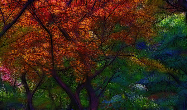 Abstrait Digital Art - Autumn 2 by Jean-Marc Lacombe