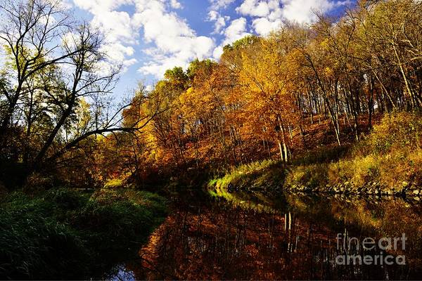 Photograph - Autumn Along The Zumbro River by Larry Ricker