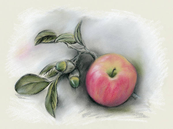 Pastel - Autumn Apple And Acorns by MM Anderson