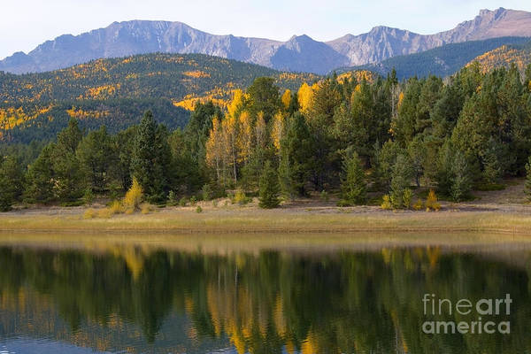 Photograph - Autumn Aspen Reflections At Crystal Creek Reservoir by Steve Krull