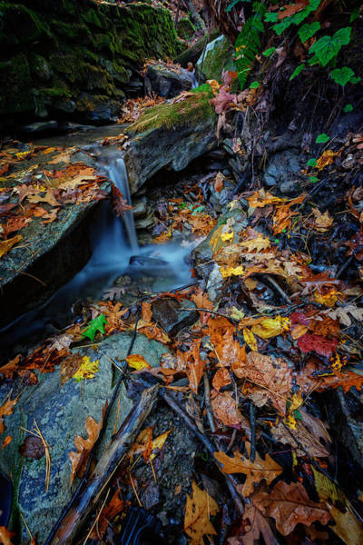 Letchworth Photograph - Autumn At A Mountain Stream by Rick Berk