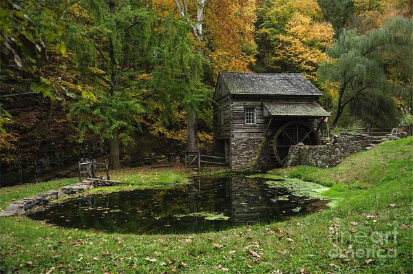 Photograph - Autumn At Cuttalossa Farm I by Debra Fedchin