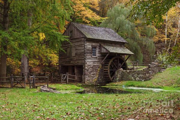 Photograph - Autumn At Cuttalossa Farm II by Debra Fedchin