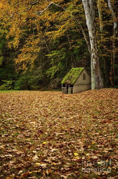 Photograph - Autumn At Cuttalossa Farm Iv by Debra Fedchin