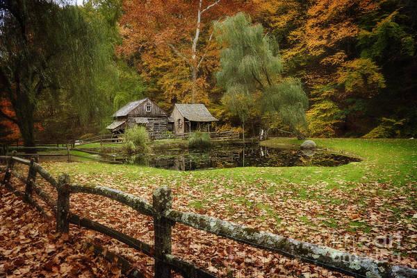 Autumn At Cuttalossa Farm V Art Print