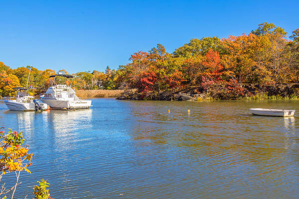 Photograph - Autumn At Milton Landing by Brian MacLean