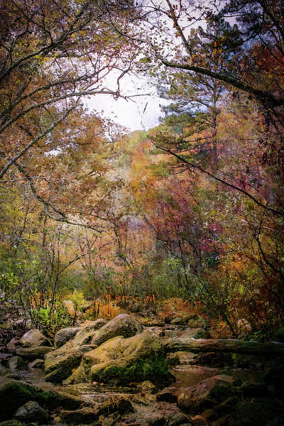 Photograph - Autumn At Pickle Creek Digital Painting 6289 Dp_2 by Steven Ward