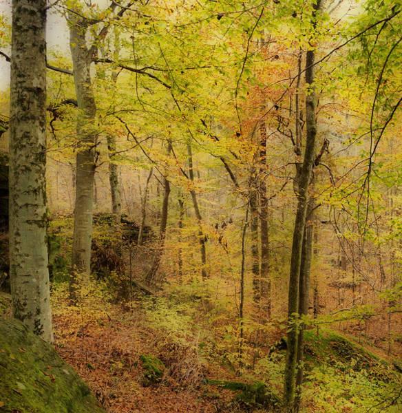 Photograph - Autumn At Rim Rock by Sandy Keeton