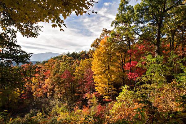 Wall Art - Digital Art - Autumn At Roaring Fork by Lana Trussell