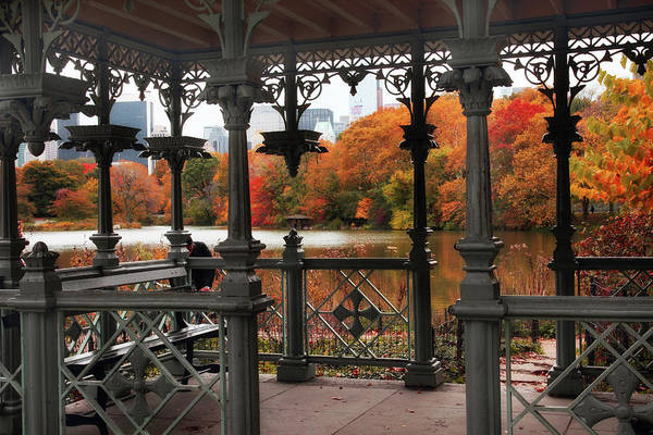Photograph - Autumn At The Ladies Pavilion by Jessica Jenney