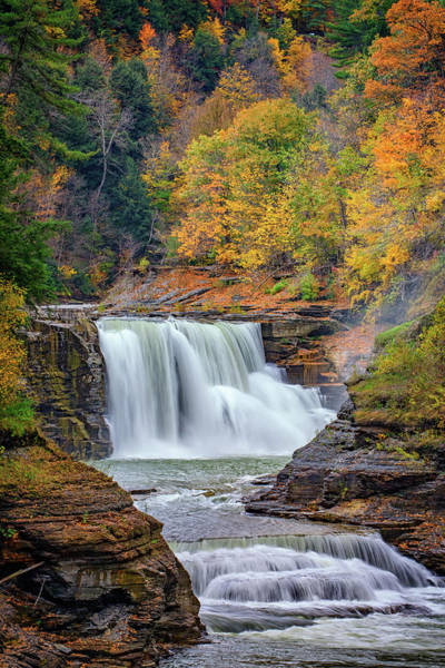Genesee Photograph - Autumn At The Lower Falls by Rick Berk