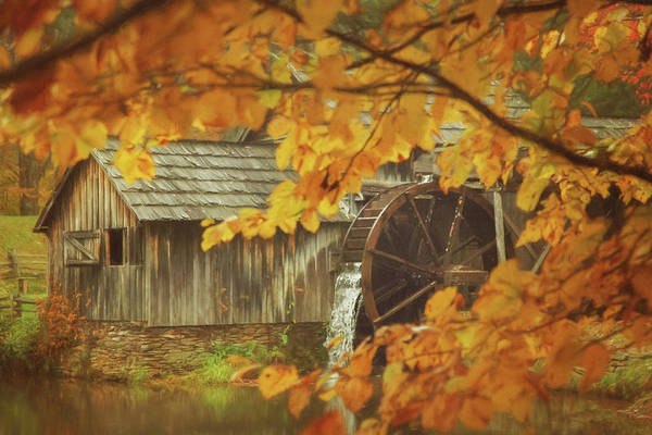 Wall Art - Photograph - Autumn At The Mill by Carrie Ann Grippo-Pike