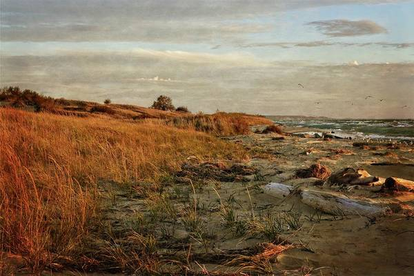 Photograph - Autumn At The Mouth Of The Big Sable by Michelle Calkins