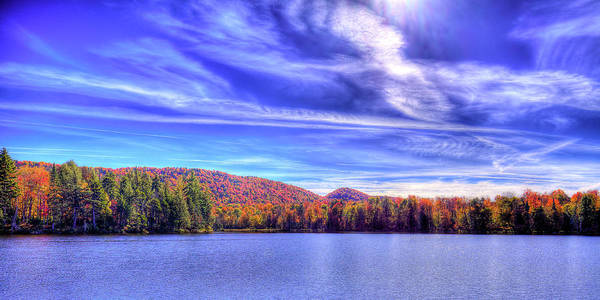 Photograph - Autumn Backlit by David Patterson