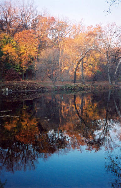 Autumn Banks Of The Brandywine Art Print