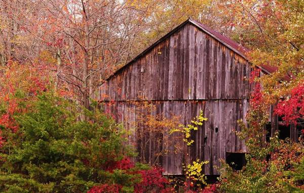 Photograph - Autumn Barn by Buddy Scott
