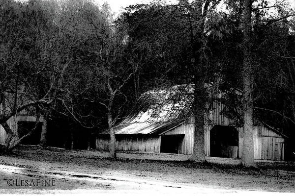 Photograph - Autumn Barn In Alabama Bw by Lesa Fine