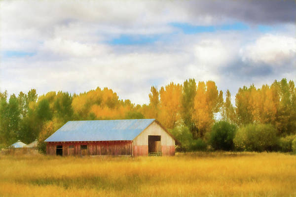 Photograph - Autumn Barn by TL Mair