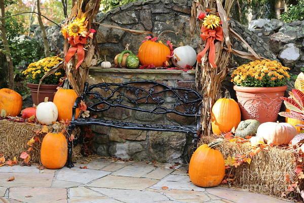 Photograph - Autumn Bench by Carol Groenen